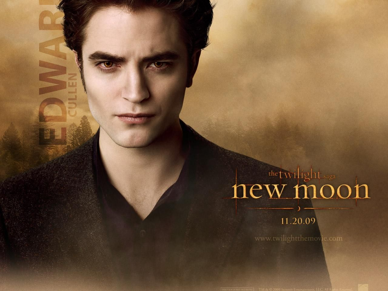 twilight saga new moon essay Compare and contrast essay on twilight book explains how the high school had scheduled bella for an article on front page school newspaper because she is a new.