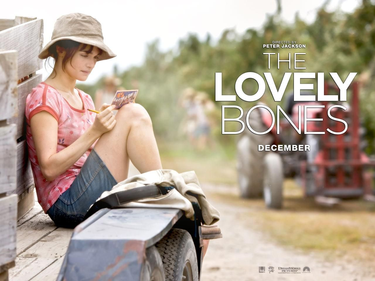 the lovely bones essay outline